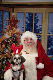 Santa and Comet the reindeer <br />