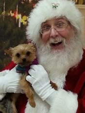 Santa at Steven Swans Humane Society Annual pet photos! 2015 Added 1/2/16