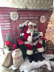 Santa appearing at Santa's workshop! 2015  Added 1/2/16